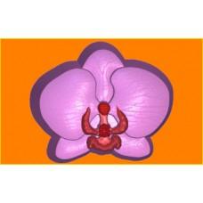 418 - Орхидея, форма для мыла