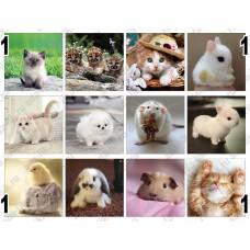 Няшные и мимишные животные, картинки для мыла